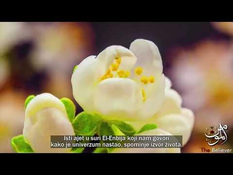 Teorija stvaranja (Veliki Prasak)   Islam i Nauka ᴴᴰ from YouTube · Duration:  13 minutes 44 seconds