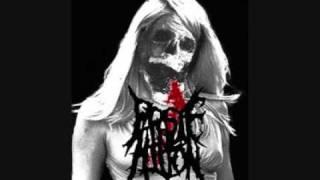 Parasite Hilton - Stallowned