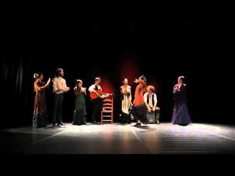 Flamenco Projects - Fiesta flamenca para eventos / Fiesta for events