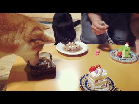 2歳のお祝いにあれを手作りした結果⁈ Happy 2nd birthday!