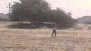 bruja en coahuila (video completo)
