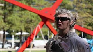 """A Fresh Look for Mark di Suvero's """"Ave"""" at the Dallas Museum of Art"""