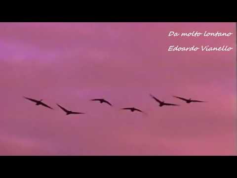 Da molto lontano - Edoardo Vianello (live)