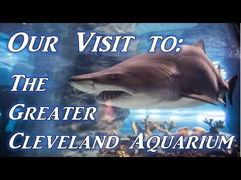 Greater Cleveland Aquarium! | Not Impressed!