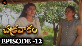 Episode 12 | Chakravakam Telugu Daily Serial