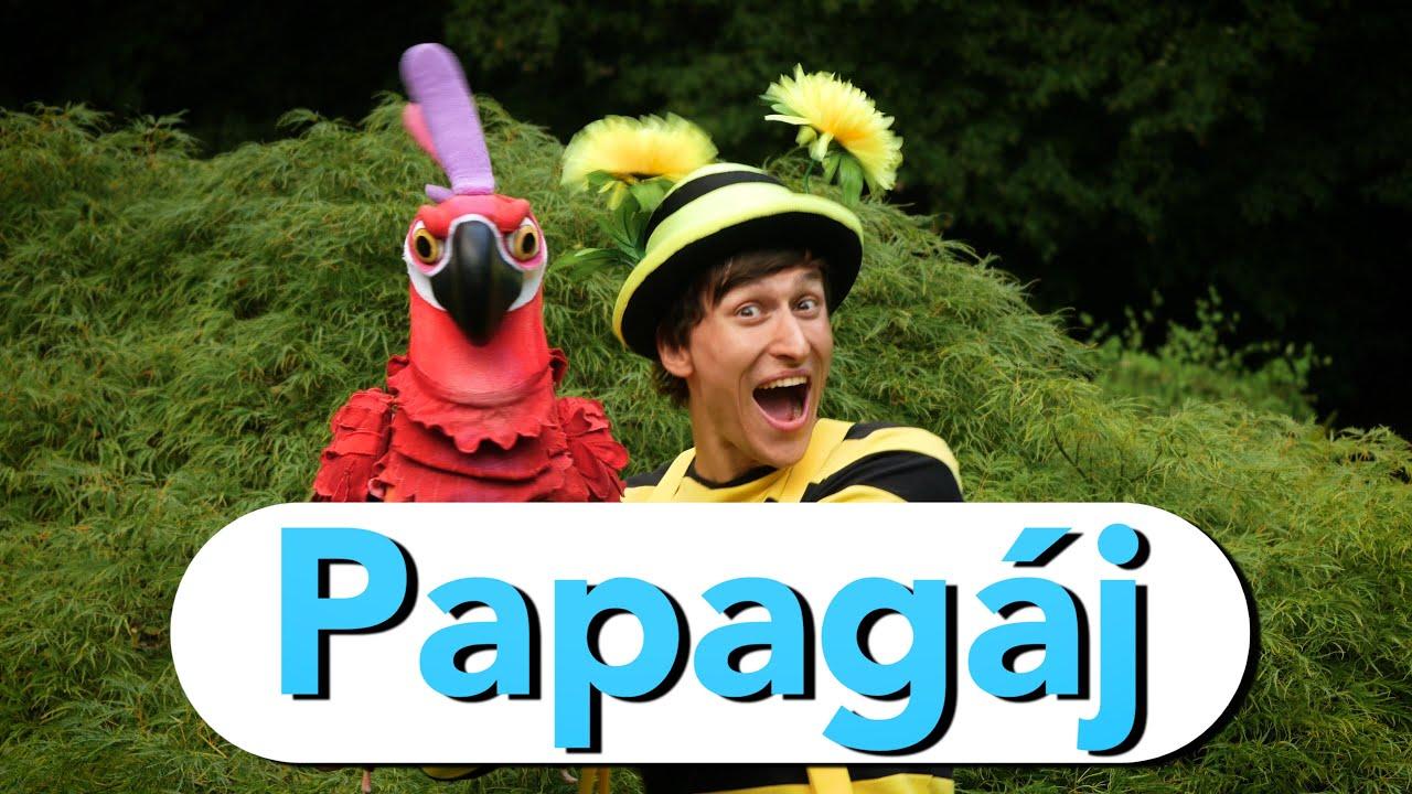 Smejko a Tanculienka - Papagáj - YouTube