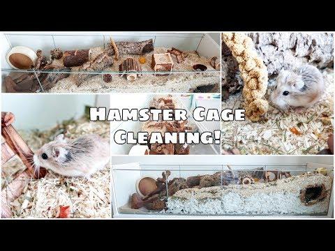 german-inspired-hamster-cage- -ikea-detolf