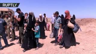 نزوح نصف مليون عراقي من أهالي الموصل بالعراق (فيديو)