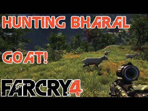 Far Cry 4 Bharal Hunting Location For Bharal Skins - Where Are Bharal?