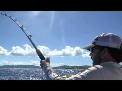 St. Croix Offshore Fishing with Captain Cook