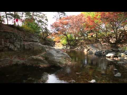 [TVZONE] Beauty preserved by Deokdong Village Pohang Yonggyejeong