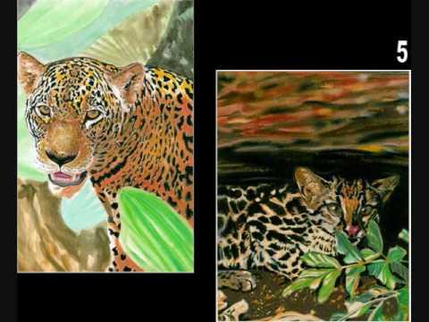 Paintings Peruvian Arts