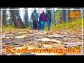 Столбовая видовка /Канатная дорога /Бобровый лог /Красноярск #3-3