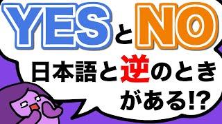 英会話で絶対1回は間違える!否定疑問文でYesとNo 日本語と反対に答えられる?[#245]