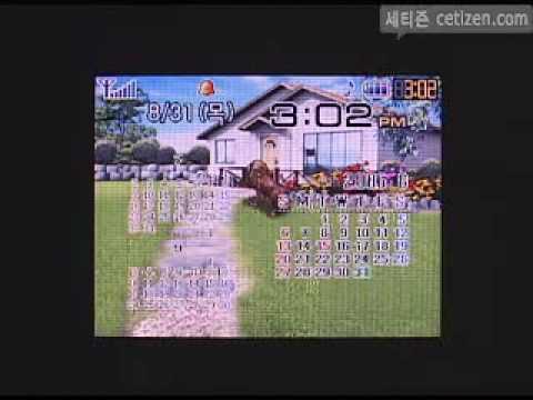 SPH-V9900 화면(Display)