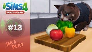 The Sims 4 Кошки и собаки | Мордой в капусту! - #13