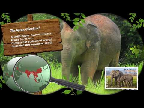 Australia Post Endangered Wildlife Stamps (2016)