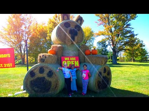 Marilyn's Crazy Corn Maze | Hamilton County, Indiana