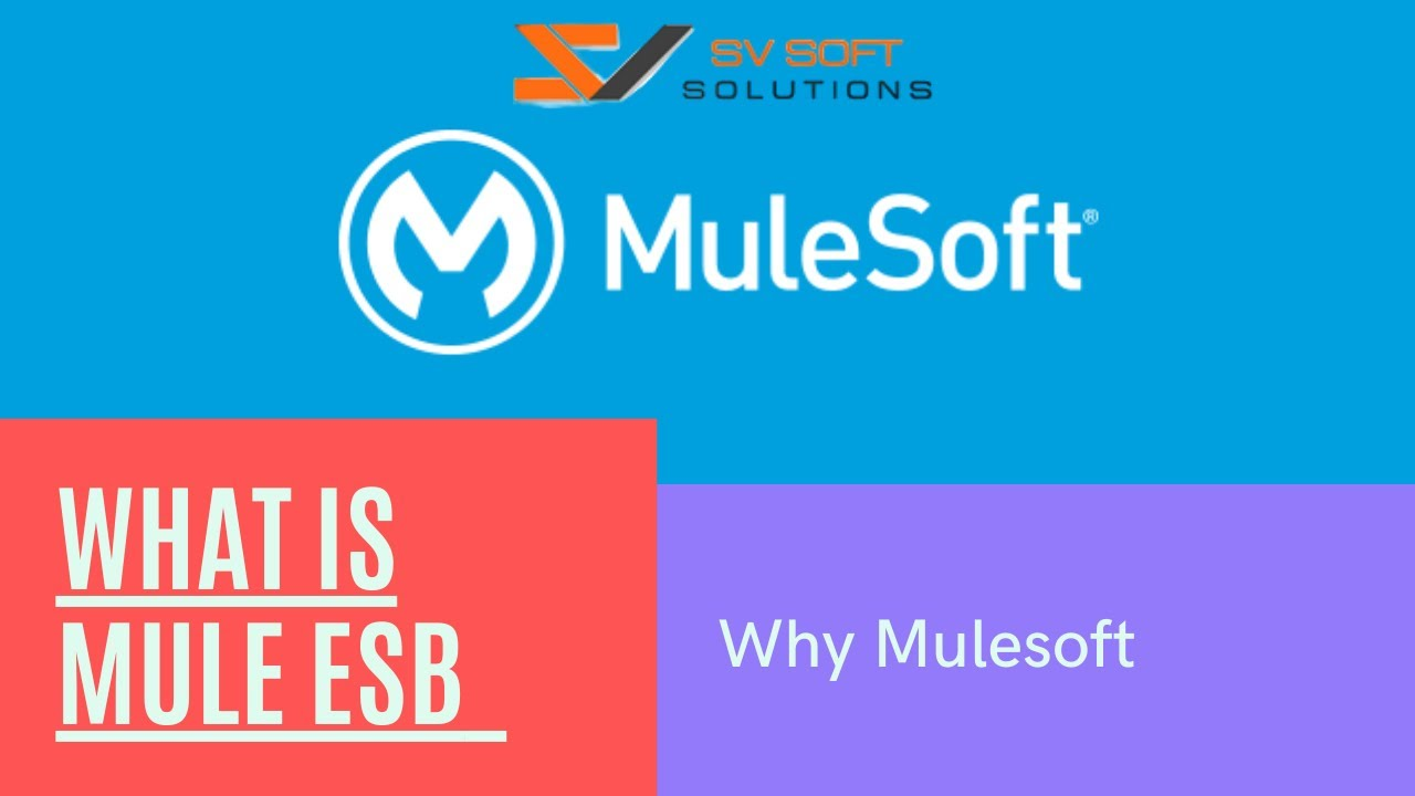 what is esb why mule mulesoft training tutorials for beginners [ 1280 x 720 Pixel ]
