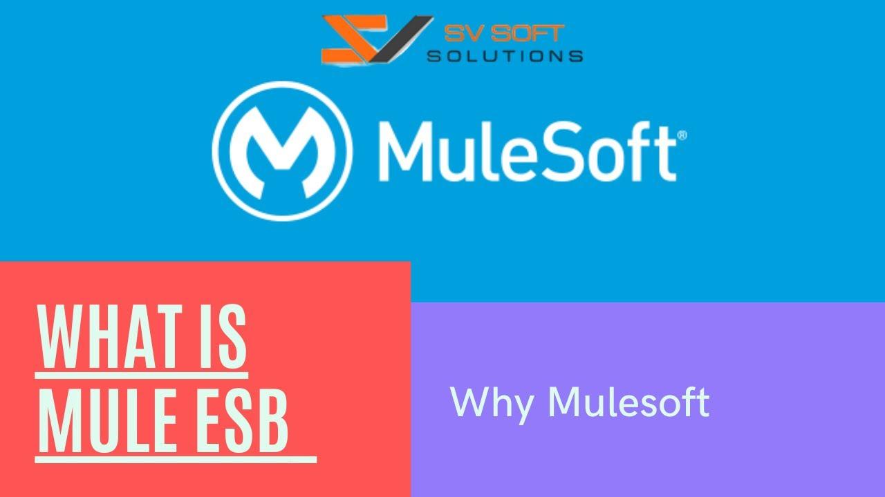 medium resolution of what is mule esb why mulesoft mulesoft training tutorial for beginners