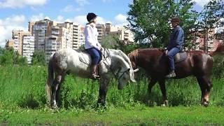 Конная экскурсия * Клуб - ЭСКАДРОН * Тольятти 2017