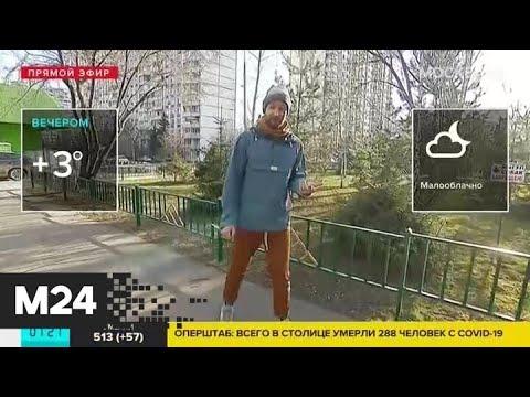 """""""Утро"""": москвичей ожидает малооблачная погода в четверг - Москва 24"""