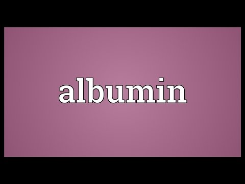 Albumin Meaning