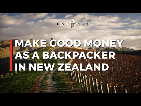 "MAKE GOOD MONEY AS A BACKPACKER IN NEW ZEALAND | ""Milking the Kiwi Cow"""