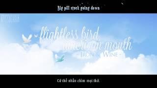 [Lyrics+Vietsub] Flightless Bird, American Mouth - Iron & Wine