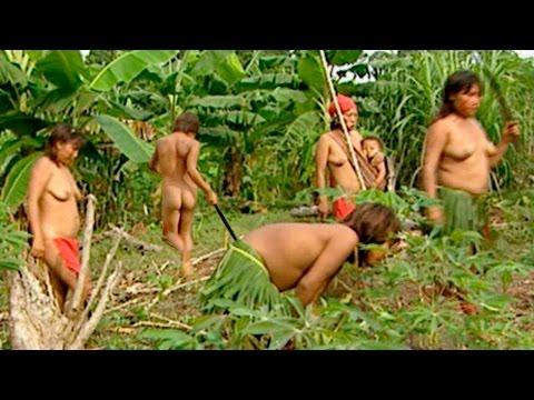 El Sexo Femenino: Mujeres y Hembras | Documental Completo - Planet Doc