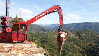 Seilkran für die Holzrückung / Gebirgsharvester / Kippmastseilgerät für die Holzbringung /TST