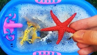 Learn Colors with Sea Wild Zoo Animals Farm Surprise Toy for Kid Child with Blue Water Pool