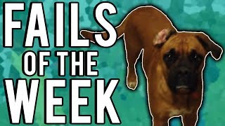 Best Fails of the Week (January 2018)    FailUnited