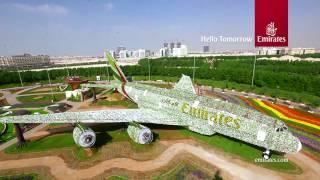 بالفيديو: هيكل طائرة