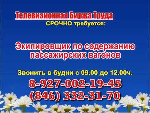 Телевизионная биржа труда. Эфир передачи от 09.08.2018