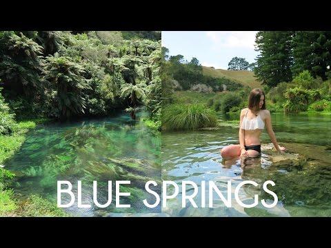 Blue Springs Putaruru | New Zealand Travel Vlog