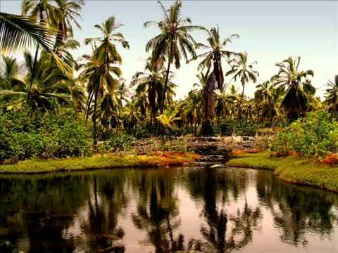 Blackwater Refuge - Hawaii Nice
