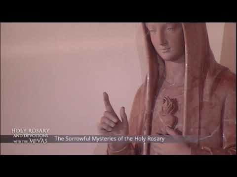 Holy Rosary and Devotions with the Franciscan Missionaries of the Eternal Word - 2021-01-22 - Holy R