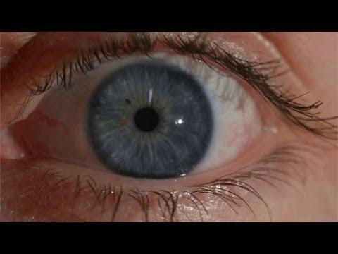 Chromosome 15 Eye Colour Youtube