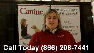 In Home Dog Training Ct