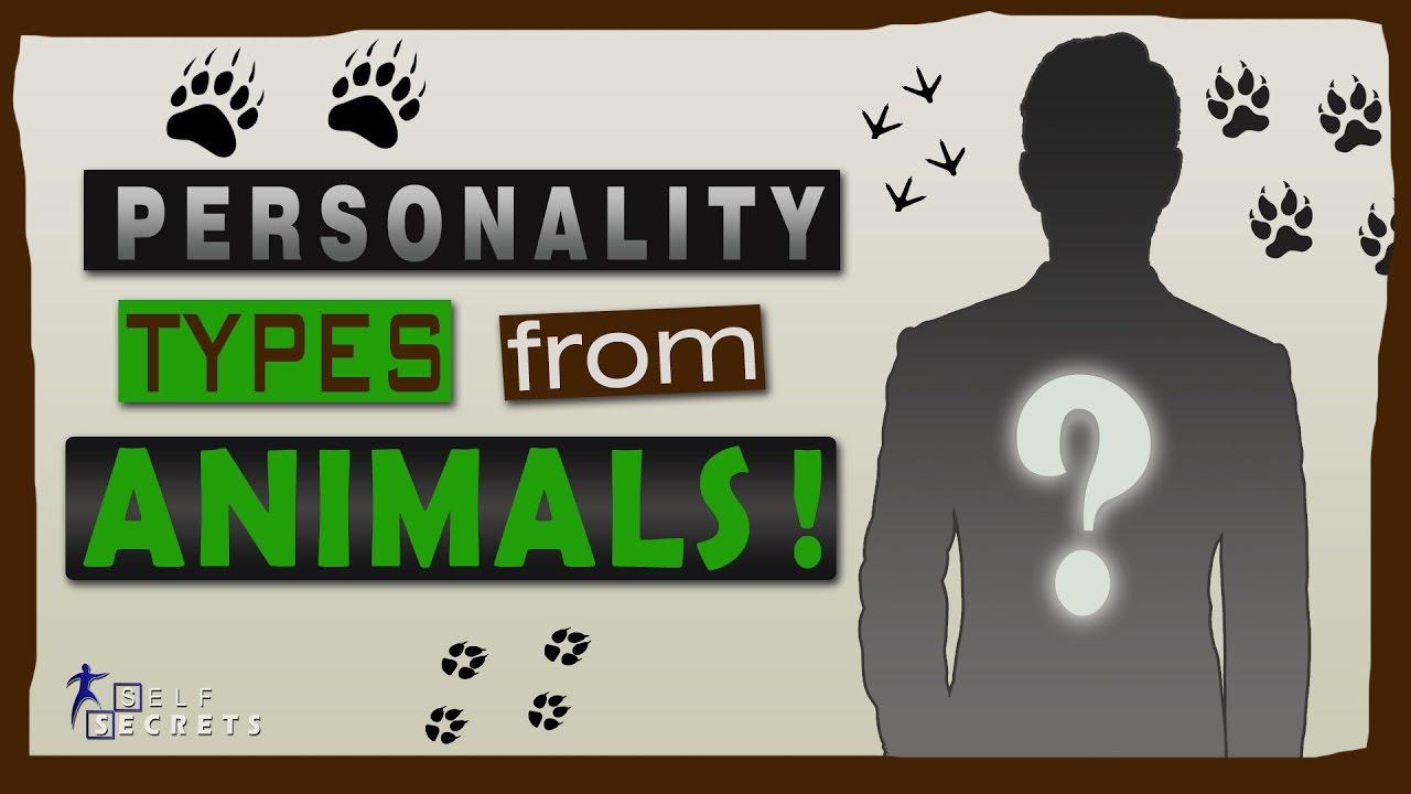 Favorite animal personality test