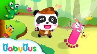 Baby Panda Finds Numbers | Learn Numbers | Children Learning | Kids Games | BabyBus Games