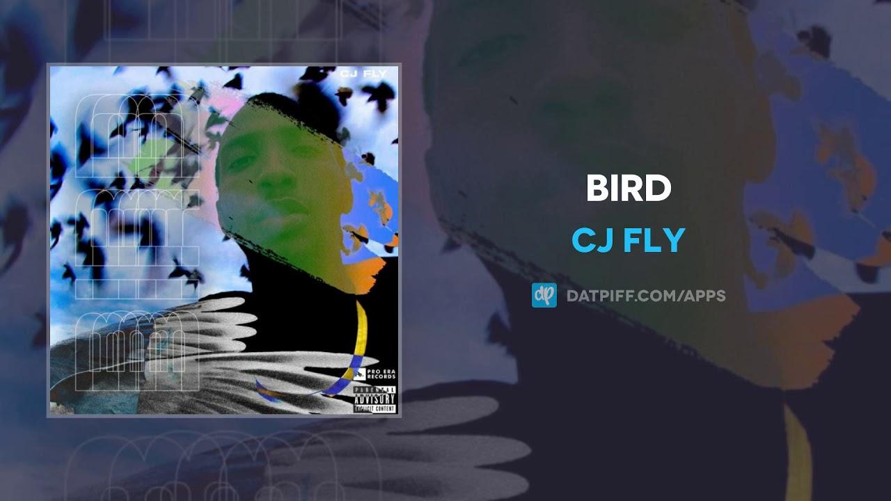 CJ Fly — Bird (AUDIO)