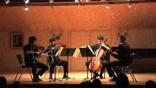 "Schubert String Quartet no 14 in D Minor, D 810, Andante, con moto, ""Death and the Maiden"".mov"