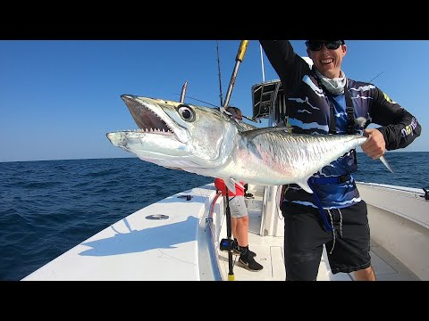Offshore Fishing With 8lb Test (King Fish And Bonito!)