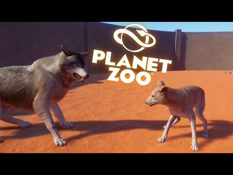 4 DINGOES VS 4 TIMBER WOLVES| Planet Zoo |