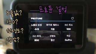 고프로8 프로튠(프로파일) 세부설정