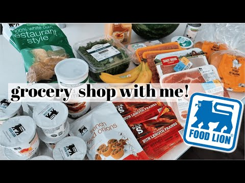 FOOD LION GROCERY HAUL + SHOP WITH ME || Tips for Saving Money on Groceries!