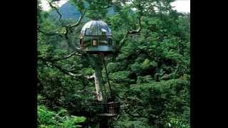 Virtual Recess and Darkside - The Jungle feat. Esper