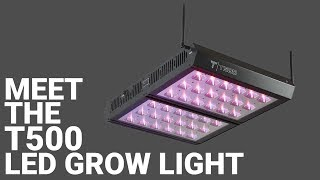 Meet the T500 LED Grow Light [500-Watt]